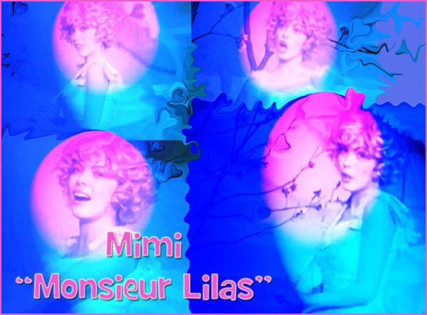 "MM - ""Monsieur Lilas"""