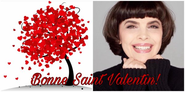 MM - Saint Valentin