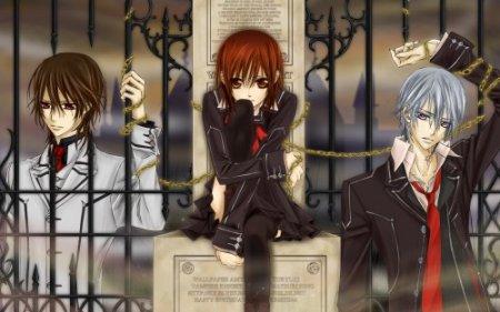 __†__ Vampire Knight __†__