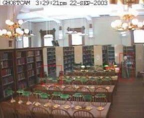 La bibliothèque de Willard. Photographies