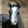 Photo de schleich-makeover