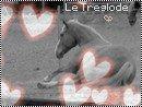 Photo de Treglode-Forever