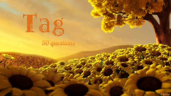 Tag 50 questions