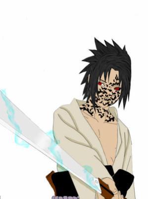 Next Gen Sasuke Level 1