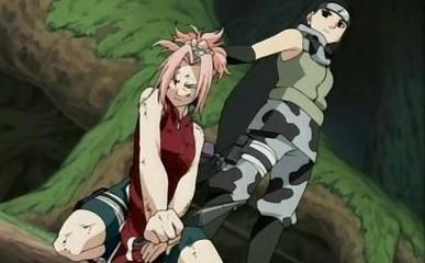 Sakura Vs Kin