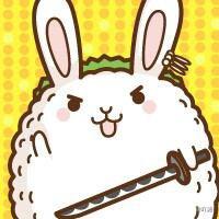➡Des jolies lapins ! (3)