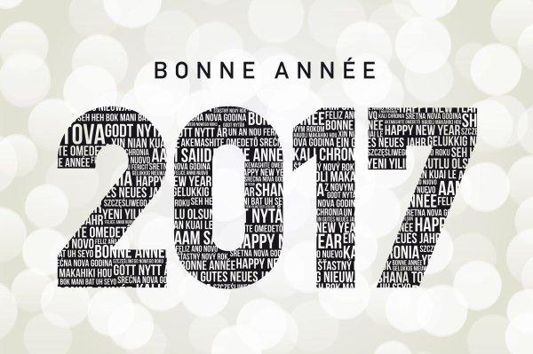 BONNE ET HEUREUSE ANNÉE 2017 ET SURTOUT LA SANTÉ