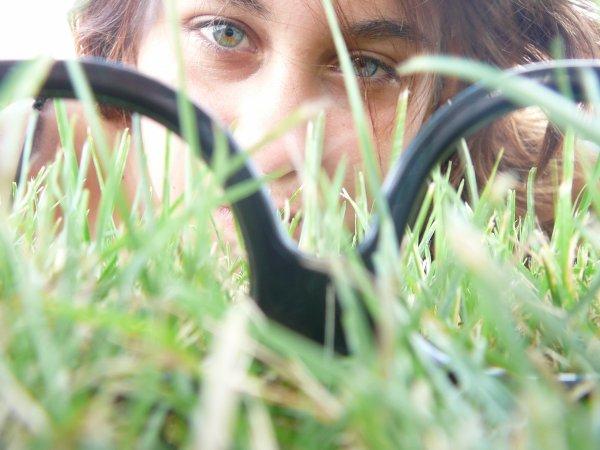 VIVE LA NATURE ET LES PICTURES ^^