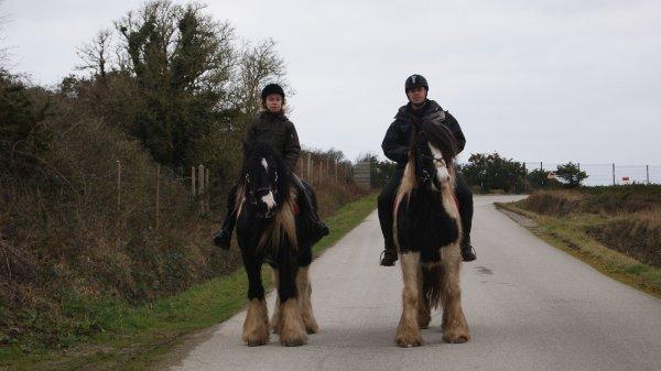 « Aime ton cheval comme il est, & non comme tu voudrais qu'il soit »