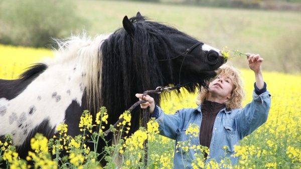 """""""L'équitation, c'est le dialogue en tête-à-tête avec un cheval, c'est la recherche de l'entente et de la perfection"""". N.O."""