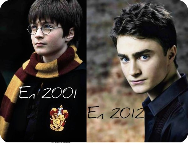 Harry Potter/Daniel Radcliffe