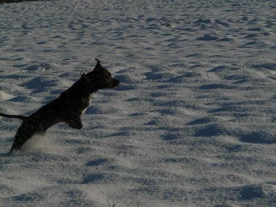Eiko qui redécouvre la neige