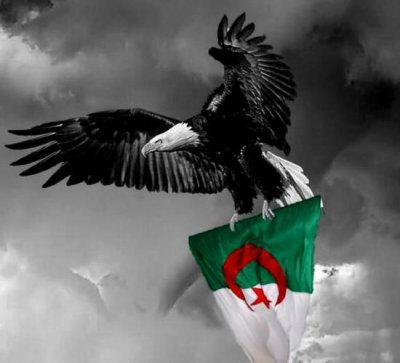HbibnA  Viv£ l'algeriE