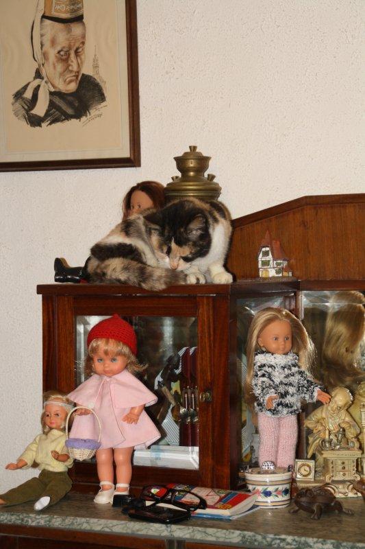 les chats et les poupées ....:)