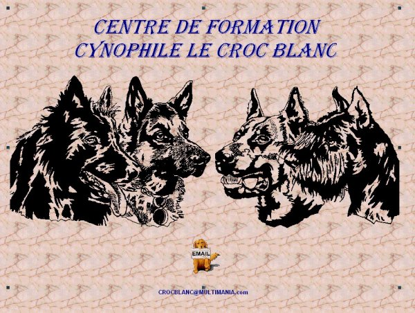 Club Canin Le Croc Blanc