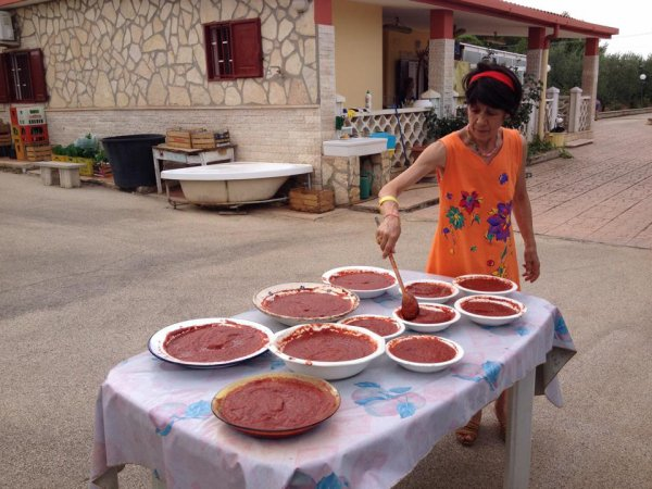 lasagne ai frutti di mare_Torta de ron_caponata di melanzane_Hazelnut clews_ Poulet a la mode grand HOTEL_ Sautè chichen Lyonnaise _NAPOLITAN TOUT MOELLEUX _ Mousse di ostriche_Melijanes moussaka_ Scazzetta del cardinale _ Zander a la Kiev_ Orecchiette in salsa d'asparagi _ Torta di compleanno _Muffins au bacon et aux tomates cerise +conchas al bloody mary +Ribollita +