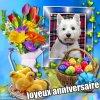 joyeux anniversaire a mon amie ruby-mon-westie17