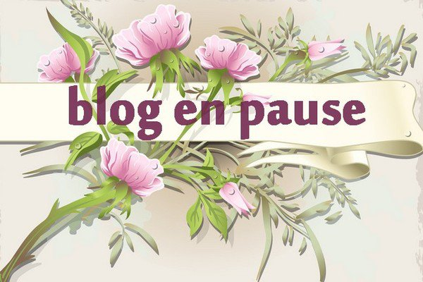 blog en pause jusqua mercredi  5 juillet pour le bapteme de mon petit fils au treport