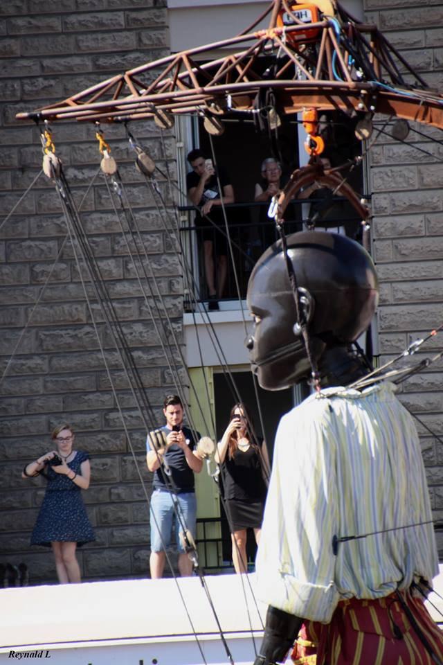 voila quelques photos du geant de la troupe royal de luxe venue  pour les 500ans du havre