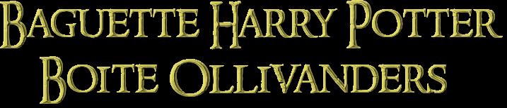 Présentation : Baguette Harry Potter
