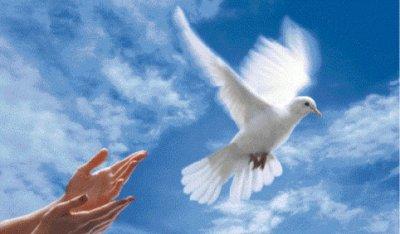 paix sur terre et coeurs et ames a tous les hommes et a touts etres humains