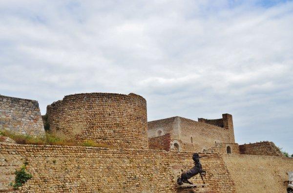 Canet-en-Roussillon ( 66140 )