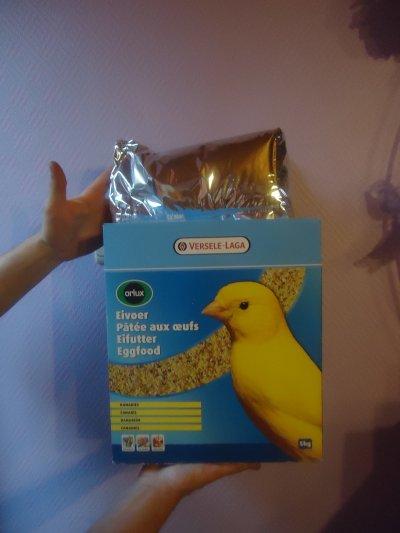 paté pour canari