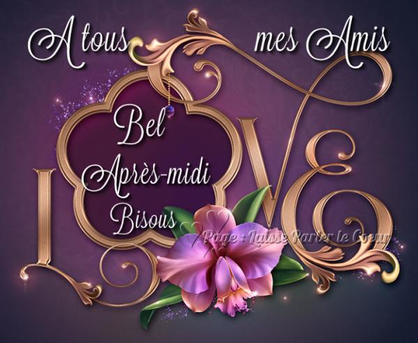 BON APRES-MIDI...