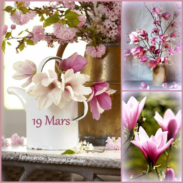 DIMACHE 19 MARS...