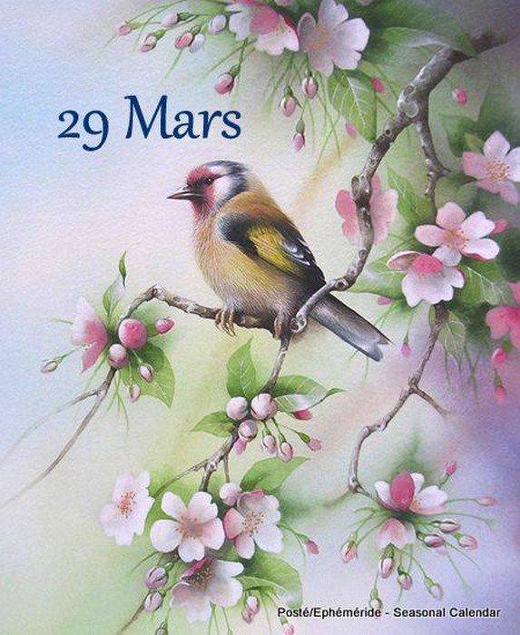 29 MARS...