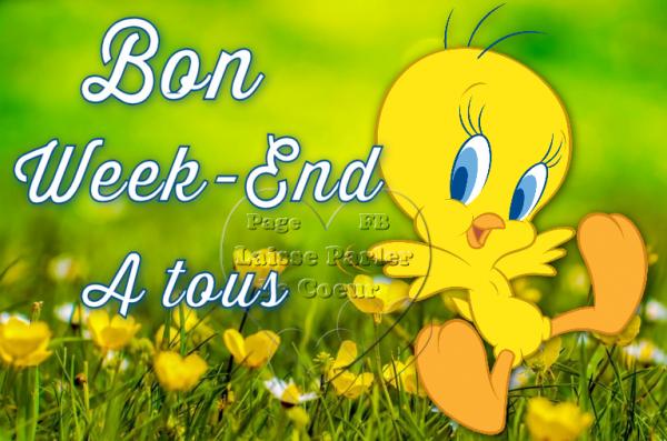 BON WEEK-END A TOUS - BONNE JOURNEE...