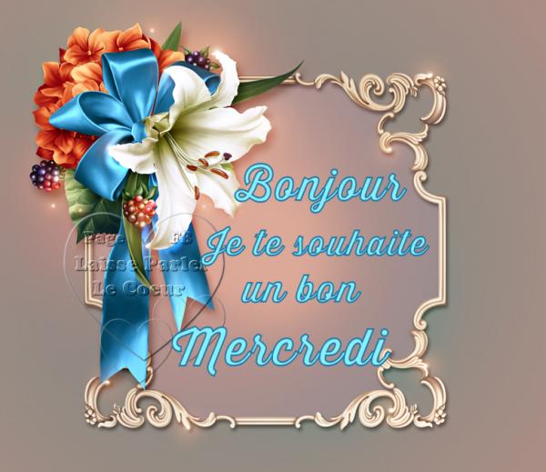 JE VOUS SOUHAITE UN BON MERCREDI ♥ BELLE JOURNEE...