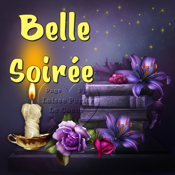 BELLE SOIREE...