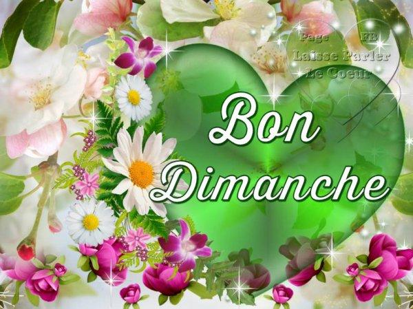 BON DMANCHE...