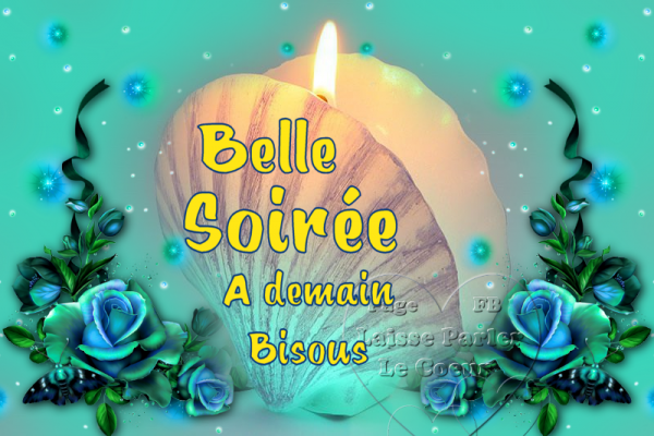 BELLE SOIREE..