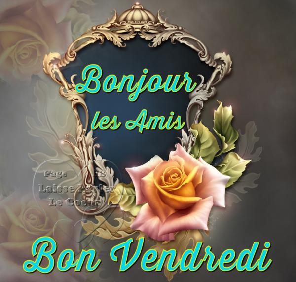 BONJOUR LES AMI(E)S...