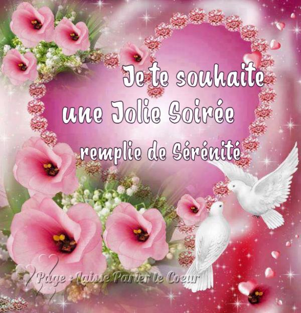 JOLIE SOIREE...