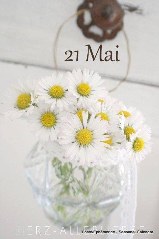 BONJOUR 21 MAI...