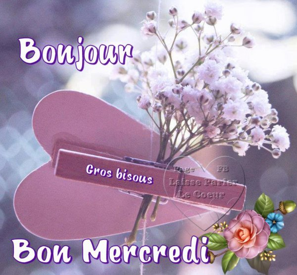 BON MERCREDI... BON APRES-MIDI...