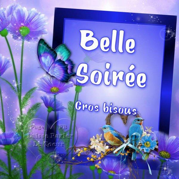 BELLE ET DOUCE SOIREE...