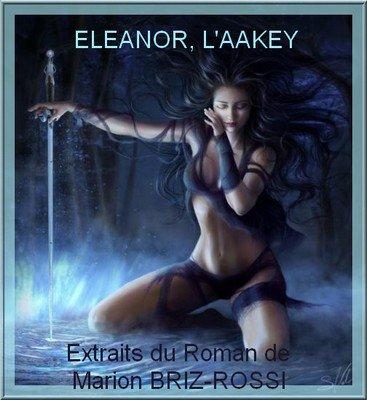"""RÉÉDITION DE MON ROMAN : """"ELEANOR, L'AAKEY"""" DISPONIBLE A LA VENTE"""