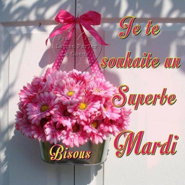 SUPERBE MARDI...
