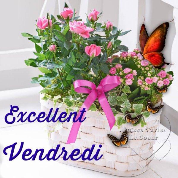 EXCELLENT VENDREDI...