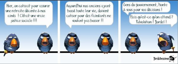 LES BIRDS... MDR
