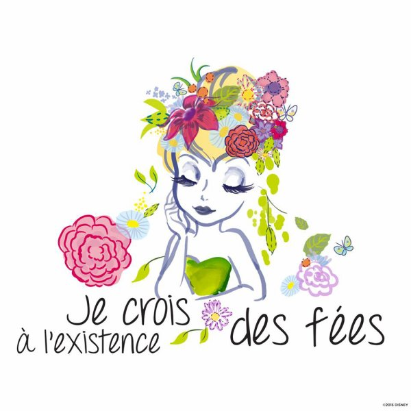 LES FEES...