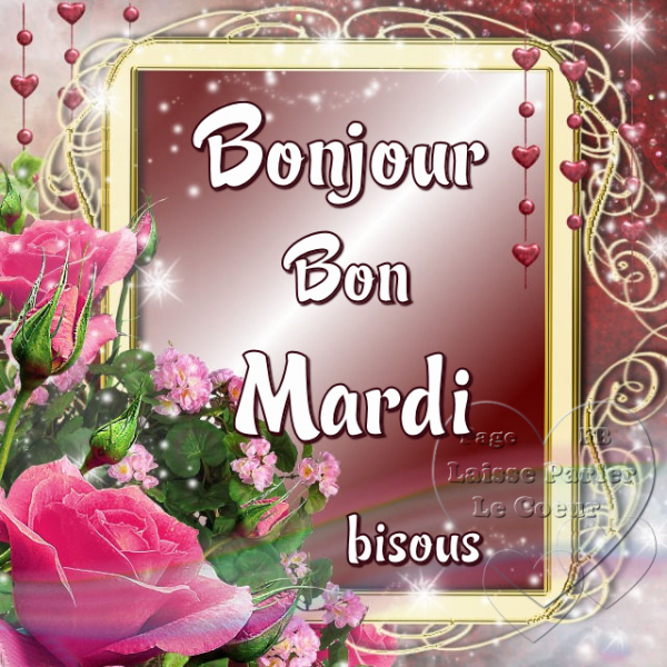 BONJOUR MARDI... 1er AOUT...