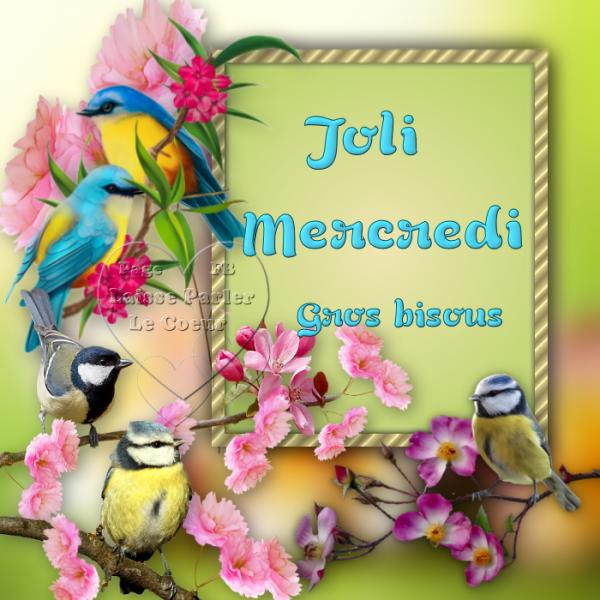 JOLI MERCREDI...
