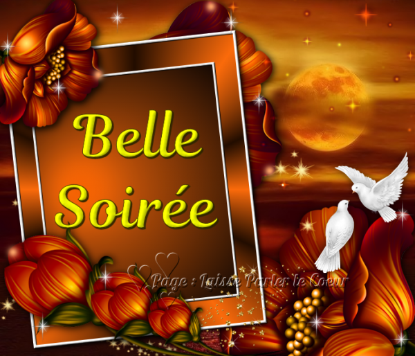 BELLE SOIRÉE...