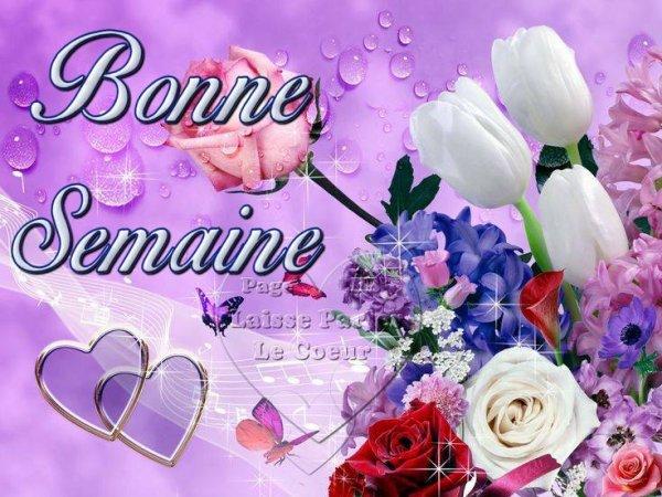 BON LUNDI & BONNE SEMAINE...