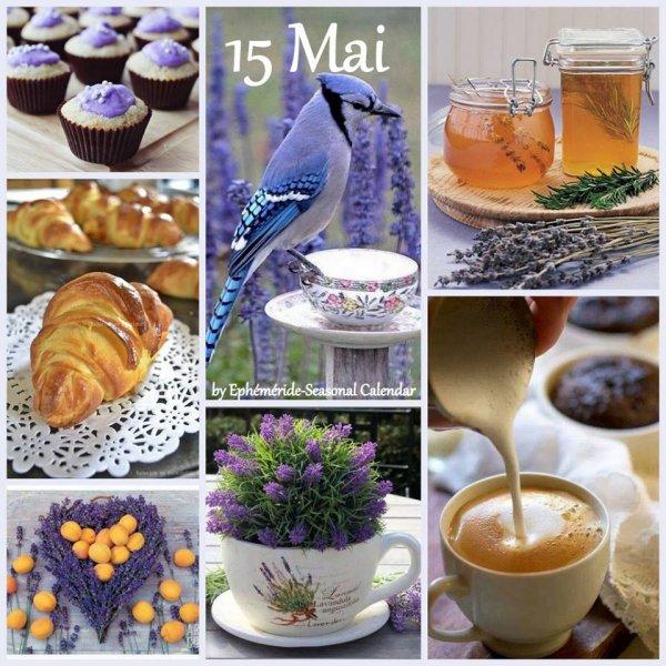 BELLE JOURNÉE... DE MARDI... 15 MAI...